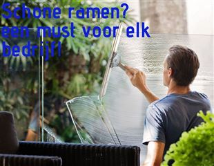DS Cleaning & Services in Maassluis foto 3